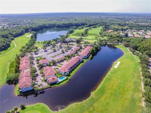 10312 Saville Rowe Lane, Tampa, FL 33626 (MLS #T2902620) :: The Duncan Duo & Associates
