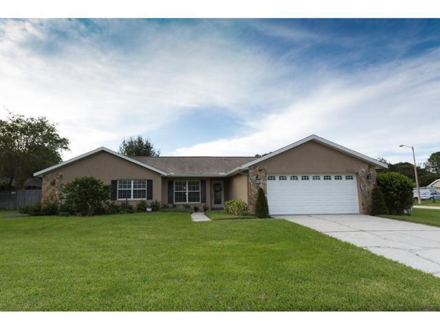 15026 Southfork Drive, Tampa, FL 33624 (MLS #T2902795) :: The Duncan Duo & Associates