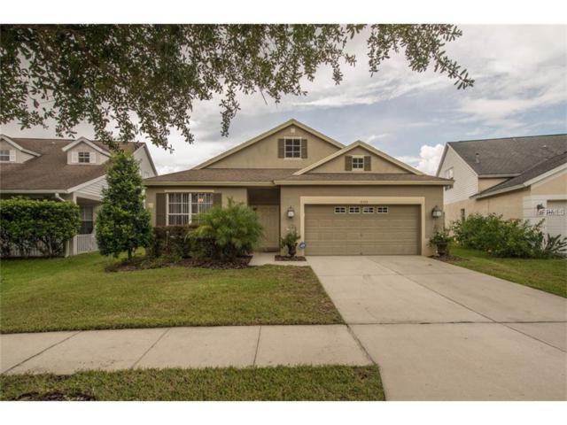 16326 Bridgeglade Lane, Lithia, FL 33547 (MLS #T2902973) :: The Duncan Duo & Associates
