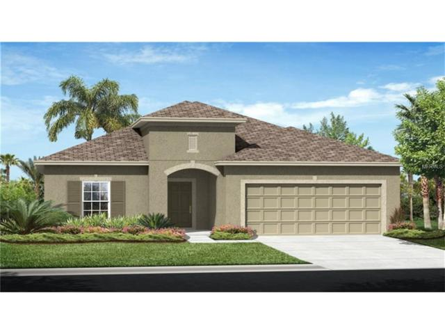 7454 Oakmark Road, Harmony, FL 34773 (MLS #T2902987) :: Godwin Realty Group