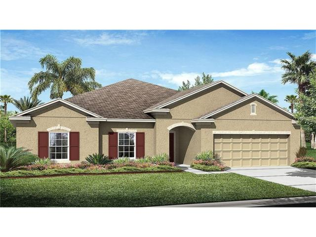 3318 Sagebrush Street, Harmony, FL 34773 (MLS #T2902992) :: Godwin Realty Group