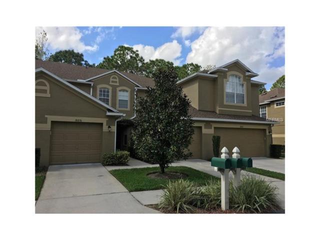 18858 Duquesne Drive, Tampa, FL 33647 (MLS #T2903310) :: Team Bohannon Keller Williams, Tampa Properties