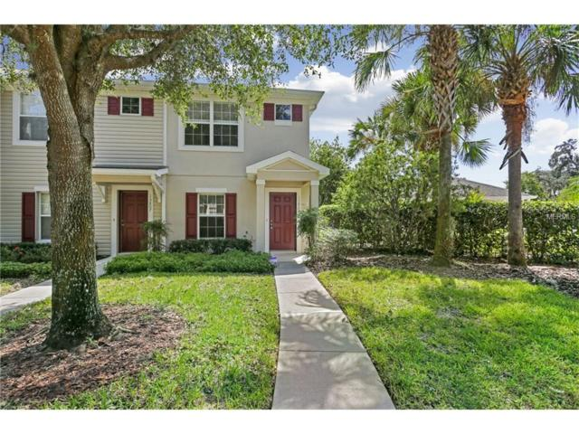 15805 Fishhawk Falls Drive, Lithia, FL 33547 (MLS #T2903372) :: The Duncan Duo & Associates