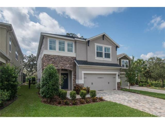 16217 Bayberry View Drive, Lithia, FL 33547 (MLS #T2903565) :: The Duncan Duo & Associates