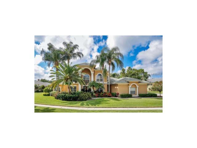 12018 Brewster Drive, Tampa, FL 33626 (MLS #T2903602) :: The Duncan Duo & Associates
