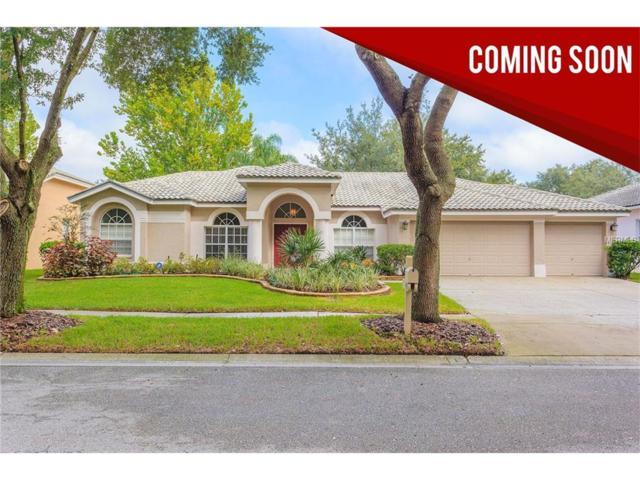 9355 Wellington Park Circle, Tampa, FL 33647 (MLS #T2903853) :: Revolution Real Estate
