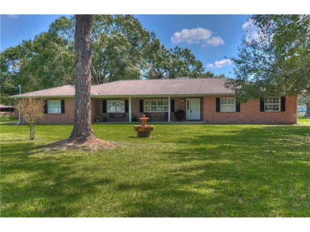19613 Hiawatha Road, Odessa, FL 33556 (MLS #T2903893) :: Griffin Group