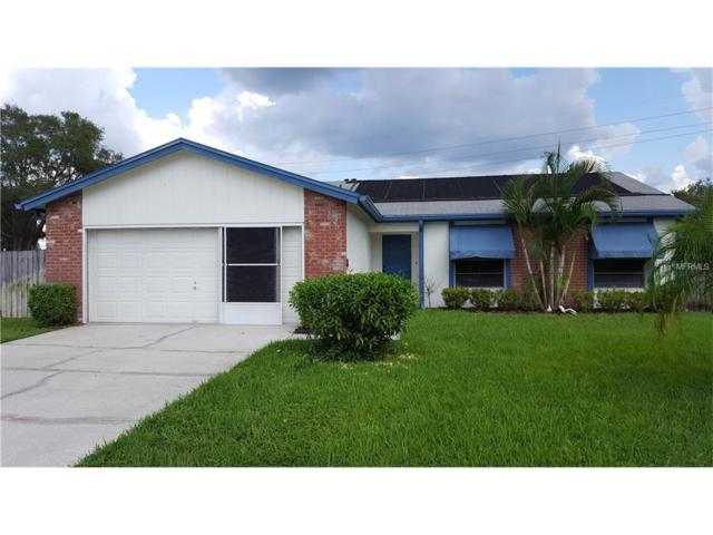 5038 Oakshire Drive, Tampa, FL 33625 (MLS #T2903899) :: The Duncan Duo & Associates