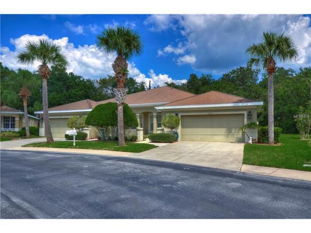 12713 Aston Creek Drive, Tampa, FL 33626 (MLS #T2903916) :: G World Properties