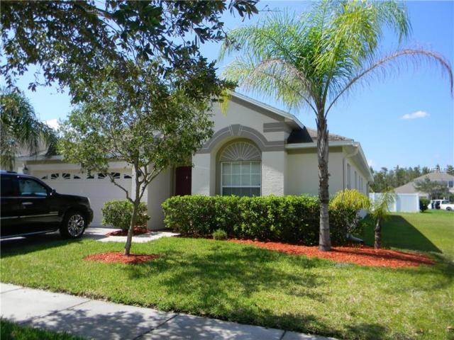 19053 Chislehurst Drive, Land O Lakes, FL 34638 (MLS #T2903923) :: Alicia Spears Realty