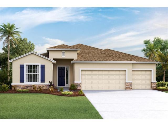 6462 Devesta Loop, Palmetto, FL 34221 (MLS #T2904059) :: Medway Realty