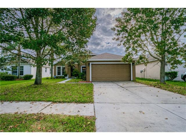 1606 Open Field Loop, Brandon, FL 33510 (MLS #T2904070) :: KELLER WILLIAMS CLASSIC VI