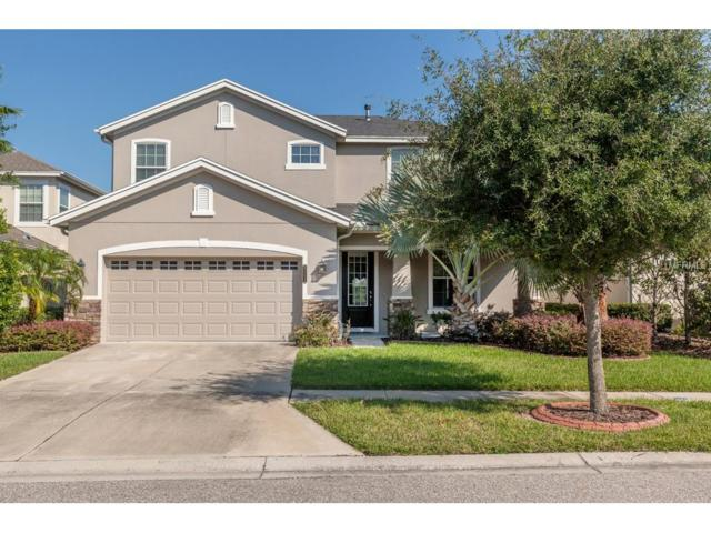 8115 Savannah Point Court, Tampa, FL 33647 (MLS #T2904126) :: Cartwright Realty