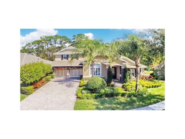 14621 Tudor Chase Drive, Tampa, FL 33626 (MLS #T2904154) :: Cartwright Realty