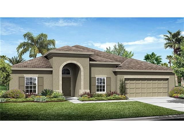 1833 Westerham Avenue, Saint Cloud, FL 34771 (MLS #T2904218) :: G World Properties