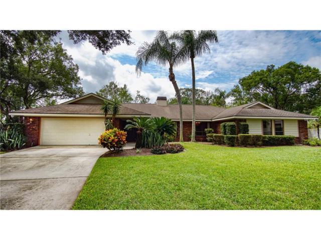 13802 Magdalene Lake Cove, Tampa, FL 33613 (MLS #T2904235) :: G World Properties