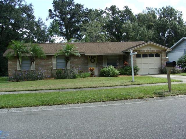 505 Oakbriar Place, Brandon, FL 33510 (MLS #T2904279) :: The Duncan Duo & Associates