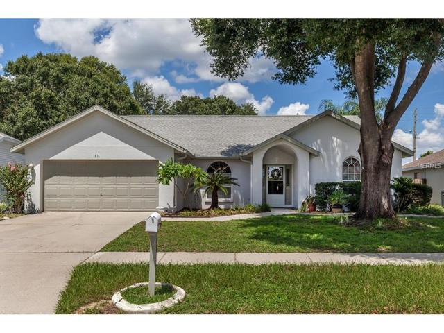 1616 Powder Ridge Drive, Valrico, FL 33594 (MLS #T2904335) :: Team Bohannon Keller Williams, Tampa Properties