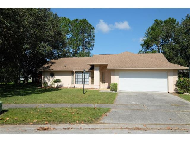 1901 Twisting Lane, Wesley Chapel, FL 33543 (MLS #T2904430) :: Team Bohannon Keller Williams, Tampa Properties