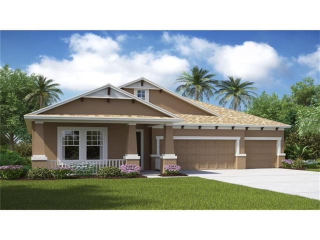 8331 Sky Eagle Drive, Tampa, FL 33635 (MLS #T2904438) :: Team Bohannon Keller Williams, Tampa Properties