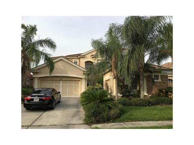 14768 San Marsala Court, Tampa, FL 33626 (MLS #T2904451) :: Cartwright Realty