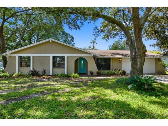 4202 Northwind Lane, Tampa, FL 33624 (MLS #T2904452) :: Revolution Real Estate