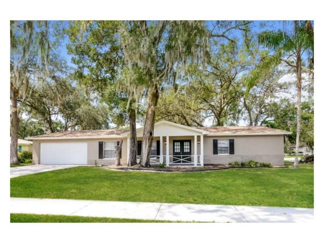 1204 Lake Valrico Lane, Valrico, FL 33594 (MLS #T2904474) :: Team Bohannon Keller Williams, Tampa Properties