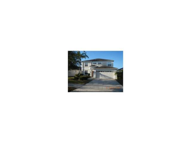 11246 Flora Springs Dr, Riverview, FL 33579 (MLS #T2904486) :: Team Bohannon Keller Williams, Tampa Properties