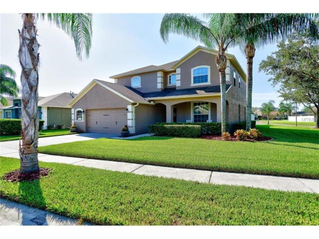 1208 Rolling Stone Run, Odessa, FL 33556 (MLS #T2904512) :: Griffin Group