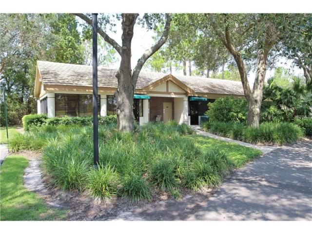 17554 Fairmeadow Drive, Tampa, FL 33647 (MLS #T2904516) :: Cartwright Realty