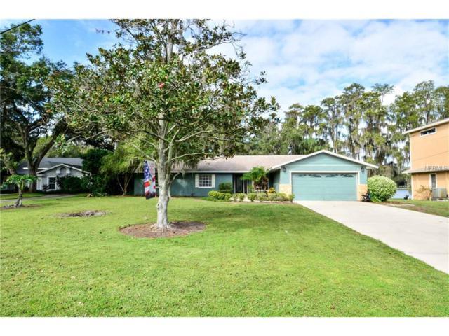 16118 Armistead Lane, Odessa, FL 33556 (MLS #T2904517) :: Team Bohannon Keller Williams, Tampa Properties