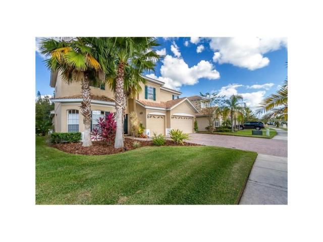 10860 Cory Lake Drive, Tampa, FL 33647 (MLS #T2904563) :: Cartwright Realty