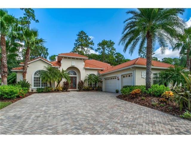 9523 Tree Tops Lake Road, Tampa, FL 33626 (MLS #T2904586) :: Cartwright Realty