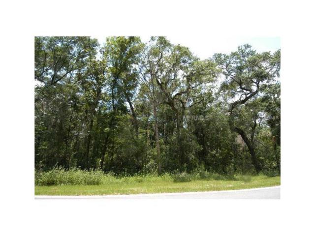 4702 Rambling River Road, Brandon, FL 33511 (MLS #T2904593) :: The Duncan Duo & Associates