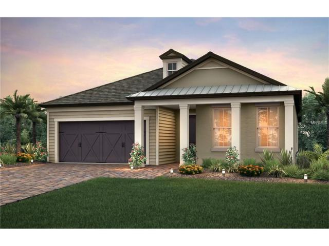 8100 Olive Brook Drive, Wesley Chapel, FL 33545 (MLS #T2904616) :: The Duncan Duo & Associates