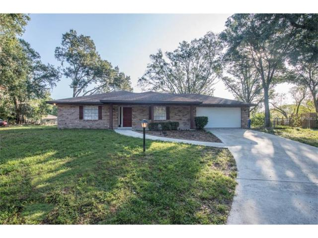 2202 Krista Lane, Brandon, FL 33511 (MLS #T2904619) :: KELLER WILLIAMS CLASSIC VI