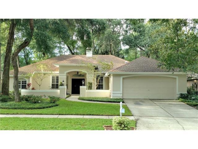 704 Stratfield Drive, Lutz, FL 33549 (MLS #T2904649) :: The Duncan Duo & Associates