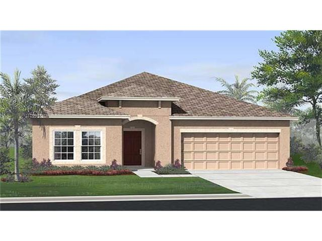 3984 Eternity Circle, Saint Cloud, FL 34772 (MLS #T2904650) :: Godwin Realty Group