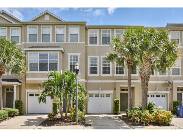 3047 Pointeview Drive, Tampa, FL 33611 (MLS #T2904651) :: Revolution Real Estate