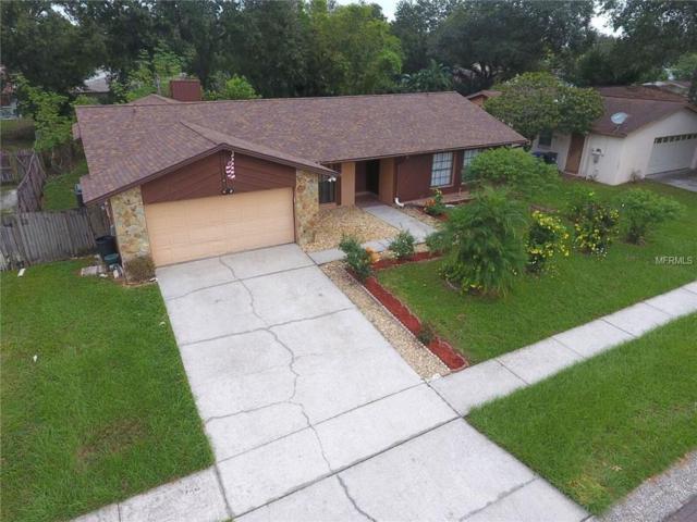 704 Caliente Drive, Brandon, FL 33511 (MLS #T2904693) :: Arruda Family Real Estate Team