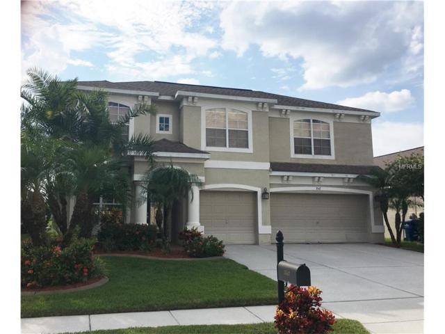 3547 Morgans Bluff Court, Land O Lakes, FL 34639 (MLS #T2904734) :: Cartwright Realty