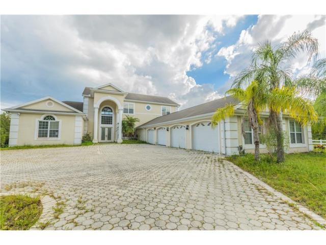11414 Innfields Drive, Odessa, FL 33556 (MLS #T2904735) :: Team Bohannon Keller Williams, Tampa Properties