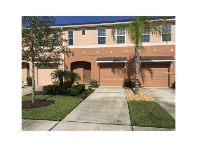 2815 Birchcreek Drive, Wesley Chapel, FL 33544 (MLS #T2904740) :: Team Bohannon Keller Williams, Tampa Properties