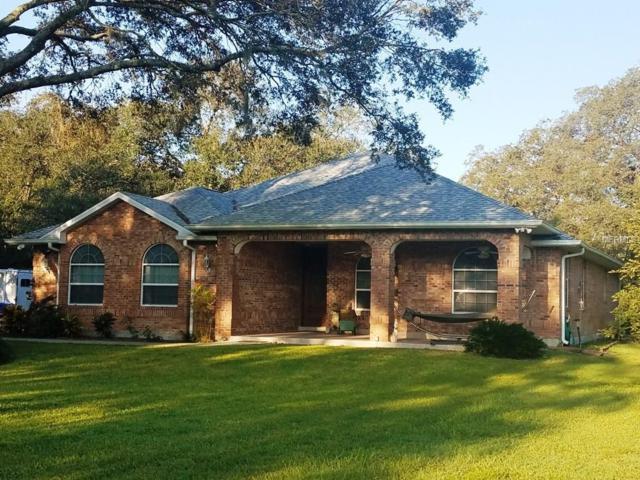 18316 30TH Street, Lutz, FL 33559 (MLS #T2904757) :: Team Bohannon Keller Williams, Tampa Properties