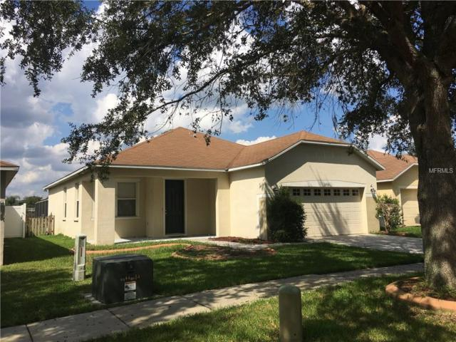 13516 Red Ear Court, Riverview, FL 33569 (MLS #T2904796) :: The Duncan Duo & Associates
