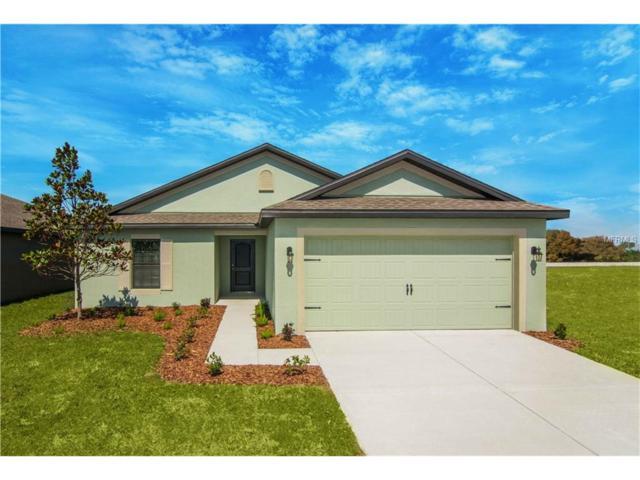 2416 Bexley Drive, Tavares, FL 32778 (MLS #T2904814) :: KELLER WILLIAMS CLASSIC VI