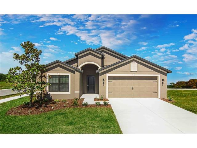 2392 Bexley Drive, Tavares, FL 32778 (MLS #T2904816) :: KELLER WILLIAMS CLASSIC VI