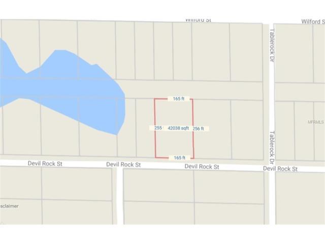 Grindstone Drive, Webster, FL 33597 (MLS #T2904820) :: Arruda Family Real Estate Team