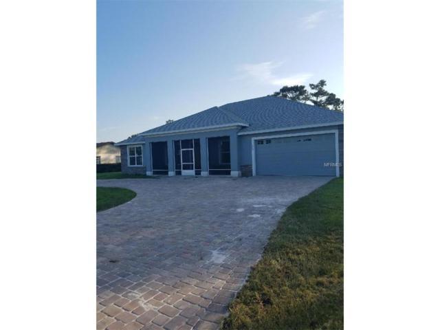 720 Basin Drive, Kissimmee, FL 34744 (MLS #T2904855) :: The Duncan Duo & Associates