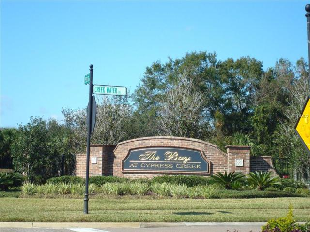 26522 Chimney Spire Lane, Wesley Chapel, FL 33544 (MLS #T2904868) :: The Duncan Duo & Associates